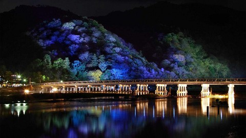 night_japanese_bridge.jpg